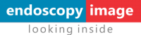 endoscopy-image